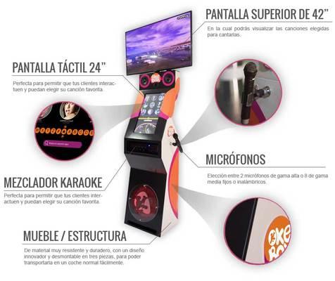 Alquiler Karaoke profesional para Fiestas Alicante