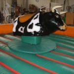 alquiler de toro mecanico en Murcia, para cumples, comuniones y Fiestas