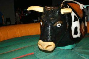 Lee más sobre el artículo Alquiler Toro Mecánico en ALZIRA